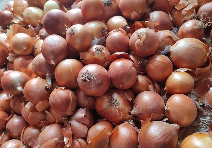 Number 1 of Best Turkey Onion Exporters